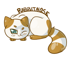 Rabbitnose by Bluefire-kitteh