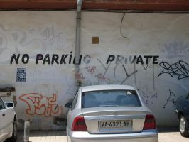 NO PARKING PRIVATE by rek607