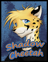 FC 2011 Badge by ShadowCheetah