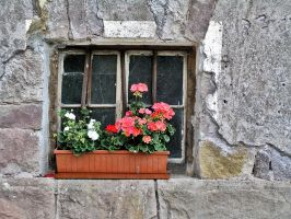 A window by edelweiss26