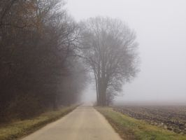 Foggy Road by Musicalcupcake93