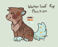 Waterleaf Pup Auction // CLOSED by catpaths