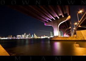 MIAMI UNDER THE BRIDGE by wolmers