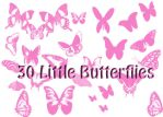 Little Butterflies by peteandbob