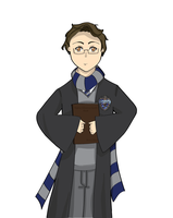 Ravenclaw - Bruce Banner by EmailinasBrother