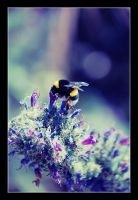 The greedy  bumblebee by Replicante