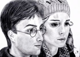 Harry and Hermione by tanjadrawing