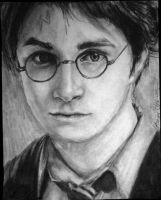 Harry Potter. by wakeupdonnie