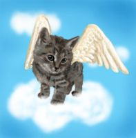 My Little Kitten Angel by MirachRavaia