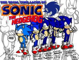 Sonic's Vocal Life by ShadowNinja976