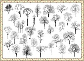 31 Withered Tree Photoshop Brushes by Jiangsir