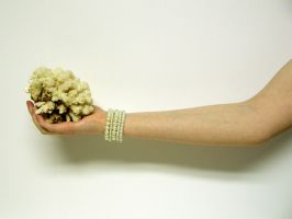 Hand with Coral Stock12 by D-is-for-Duck