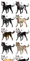FreddaxBlitz Capo Litter! (OPEN) Prices lowered 2 by EverlastingStables