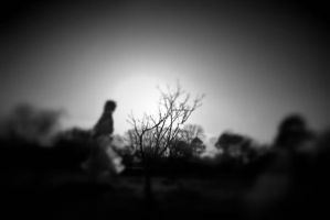 homage to keith carter by invisibletape
