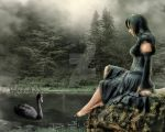 wallpaper black swan 02 by spaceibiza1313