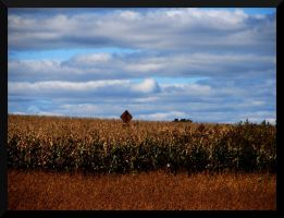 Swallowed By The Corn by lexxi