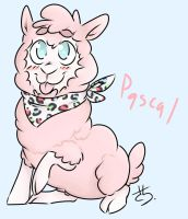Pascal the Alpaca by kyanchan