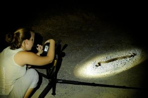 Searching for meteors by kayaksailor