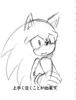 sonic cry 49can't weeping by bbpopococo