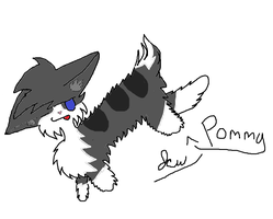 pic for Pommy by avrilrocks1200