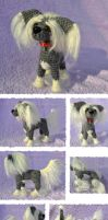 Amigurumi Chinese crested by mojcaj