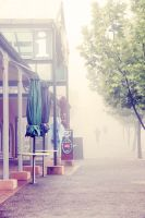 Foggy town. by incredi
