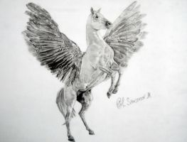 My transport - Pegasus! by MSamsonov