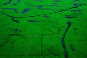 STOCK: farm land texture 01 by pulbern