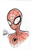 Sketchbook _ Spidey 1 by thekidKaos