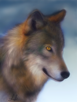 Wolf of the Forest by SuliannH