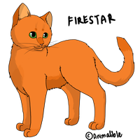 Firestar, Fireheart, Firepaw, Rusty 2 by Animalible