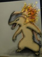 my attempt at drawing Typhlosion -color- by ownerfate
