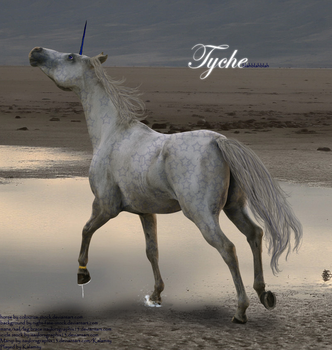 Tyche 'Tie-Key' by itaylorsgraphix13