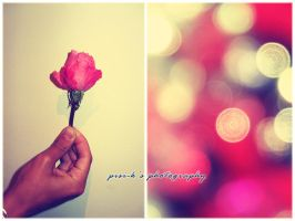 A gift from my :heart: by pisi-k