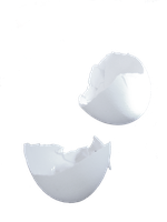 egg shell PNG by Amalus