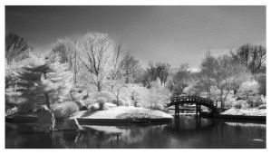 Japanese Garden IR Panorama by Captain-Galant