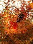 Essence of Autumn by LiveInAMoment
