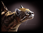 The Ocelot by shorty-antics-27