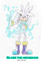 Silver the hedgehog by zavraan