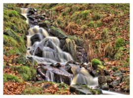 Autumn at padley 3 by mzkate