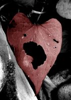 Broken Hearted by xdeborahx