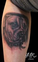 Portrait Dog by Anderstattoo