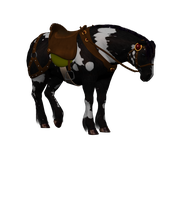The Old Friend Horse Stock Png by Direwrath