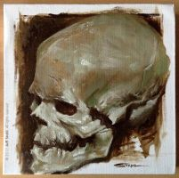 Oil painting skull study III by JeffStahl