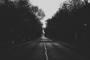 Road II by demor