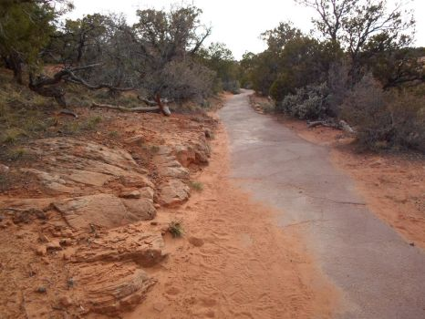 Navajo Monument 12 [sandy path] by sonicntaylstock