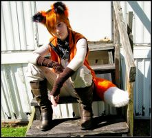 One Cool Fox by Inochi-Kitsune