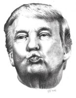 Donald Duckface by atdoodle