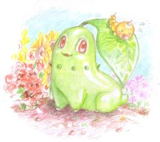 Chikorita and Weedle by SoraKokiri