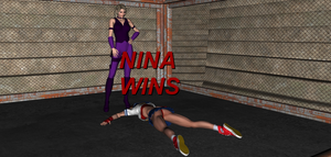 Nina Williams VS Sakura 17 by FatalHolds
